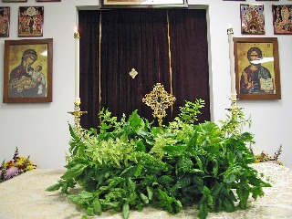 Cross surrounded by basil.