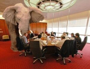 elephant-in-the-room3